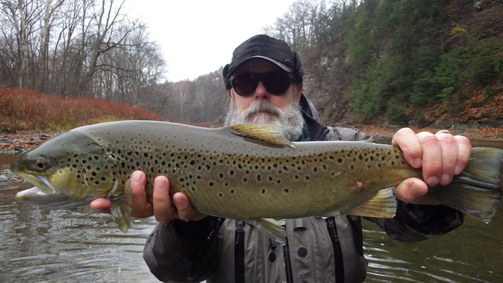 DAY 3 BROWN TROUT